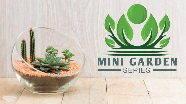 Mickelsen: Mini Garden (Fairy)