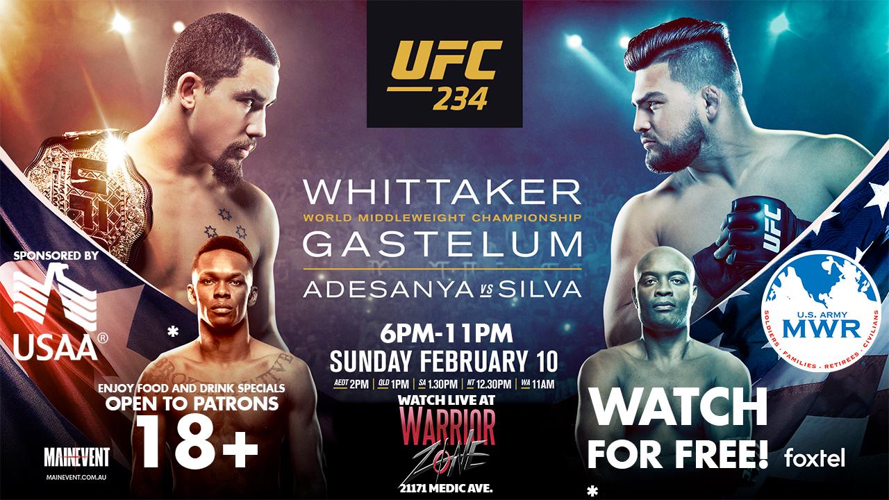 UFC Fight 234
